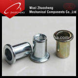 Zinc Plated M12 M10 M8 M6 Hexagon Rivet Nut