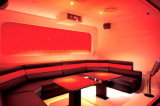 Night Club Sofa/Karaoke Sofa (KTV22)