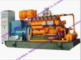 Gas /Natural Gas/ Biomass Power Generator Set (WSFD)