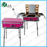 Beauty Makeup Case with Lighted (HX-DY9606P)