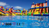 Coco Water Design Inflatable Colorful Toys for Fun LG9099