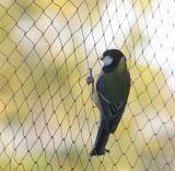 Anti Bird Netting Nylon Knotted Mist Net