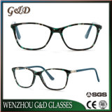Fashion Popular Acetate Spectacle Optical Frame Eyewear Eyeglass