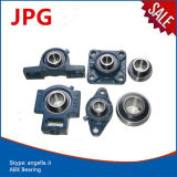 OEM Service Pillow Block Bearing Ucf218 Ucf218-56