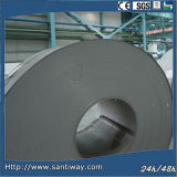 Hot Selling Galvanized Steel Coil (SC-108)