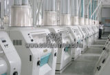 Complete Set Wheat and Maize Flour Processing Line