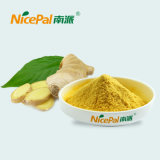 Bulk Supply Dried Ginger Powder with Free Samples