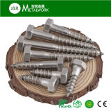 A2 A4 Stainless Steel Ss304 Ss316 Hex Hexagon Head Self Tapping Coach Lag Wood Screw (DIN571)