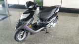 125cc/150cc Gas Scooter for Lebanon Market