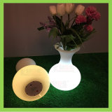 Illuminated LED Vase Remote Control Flower Pot