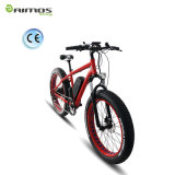 48V 500W Electric Bike, Fat Ebike.