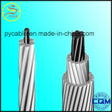 B-232 Aluminum Conductors, Concentric-Lay-Stranded, Coated Steel Reinforced (ACSR)