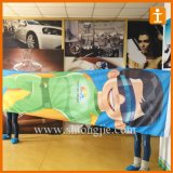 Hot Sale 90X150cm 3X5FT Promotional Flag (TJ-S019)