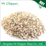 Crushed Natural Seashell Chips for Concrete Decoration