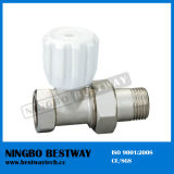 Thermostatic Valve Radiator Producer (BW-R06)