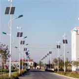 8m LED Solar Street Lamps by China Supplier