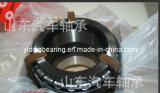 China 581079AA Front Wheel Hub Bearing for Volvo Truck