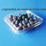 Food Grade Plastic Blueberry Punnet Fruit Packaging Box