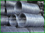 Hot Rolled Carbon Steel Wire Rod SAE 1006 SAE 1008