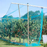 Color and UV Treatment Bird Netting