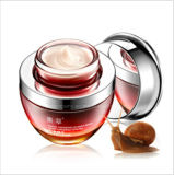 Wholesale Eye Care Cream Red Ginseng Snail Multi Functional Fancy Eye Cream