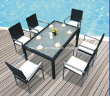 Outdoor Dining Set for Dining Room with Six Chairs (6213)