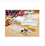Popular Design Green Plastic Eco Friendly Plastic Box Frozen Food Packaging