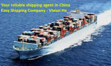 Consolidate / One Stop Sea Freight Service / Best Sea Freight From China to Dubai