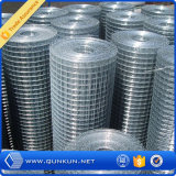 "3/8"" to 200mm Galvanized Welded Wire Mesh in Roll"