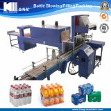 Automatic Pure/Mineral Bottle Water Packing Machine (WD)