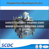 Hot Sales Chinese Weichai Wp6 Bus Engine for Vehicle (Wp6)