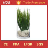 Wholesale Cheap Tall Decoration Flower Glass Vase Display