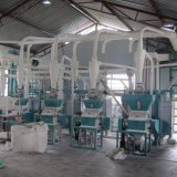 Africa Market 30ton Maize Flour Mill Milling Machine