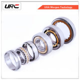 URC Ball Bearing, Auto Wheel Hub Bearing, Taper Roller Bearing, Cylindrical Roller Bearing