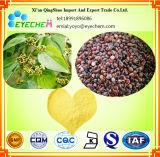 Good Quality Hovenia Dulcis Thunb Extract/ Semen Hoveniae Extract New Product