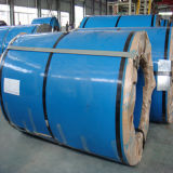 Premium Quality Stainless Steel Coil (ASTM 317 Grade)
