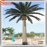 5 Meter Outdoor Palm Trees Decoration Artificial Palm Tree