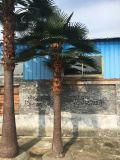 Factory Artificial Washington Palm Tree