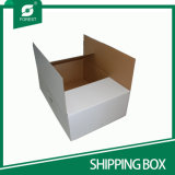 Custom Logo White Foldable Rsc Corrugated Box for Shipping