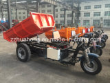 Electric Tricycle, Mini Tricycle for Cargo, 3 Wheel Motorcycle