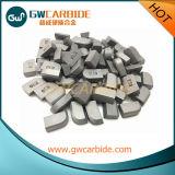 Zhuzhou Grewin Tungsten Carbide Brazed Tips