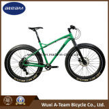 "Sram Nx 1*11 Speed 26"" Alloy Snow Bike /Fat Tire Bicycle (FAT6)"