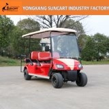 2017 New Customized Golf Cart, Double Color Painted Electric Golf Car