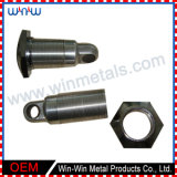 Custom Metal Fabrication Machined Turning Parts (WW-MP011)
