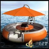 2016 Original Manufacture BBQ Donut Boat for Sale