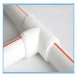 Polypropylene PPR Hot Water Plastic Pipe