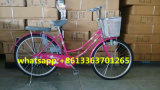 26inch Lady Bike/Woman Bicycle with Lower Price
