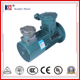 Series Electrical Induction Three-Phase AC Motor