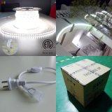 220V LED Outdoor Lights Flexible LED Strip 5050 christmas Decoration
