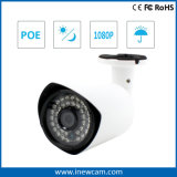 Hot Outdoor Onvif 2MP P2p Poe IP Camera with Mic